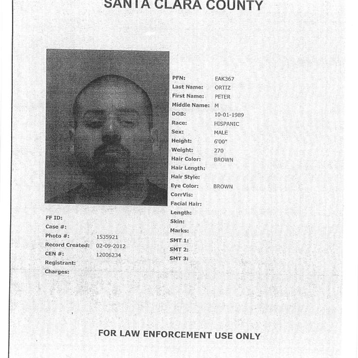Peter Ortiz Criminal Record Courtesy of the SCC Court Clerk's Office.